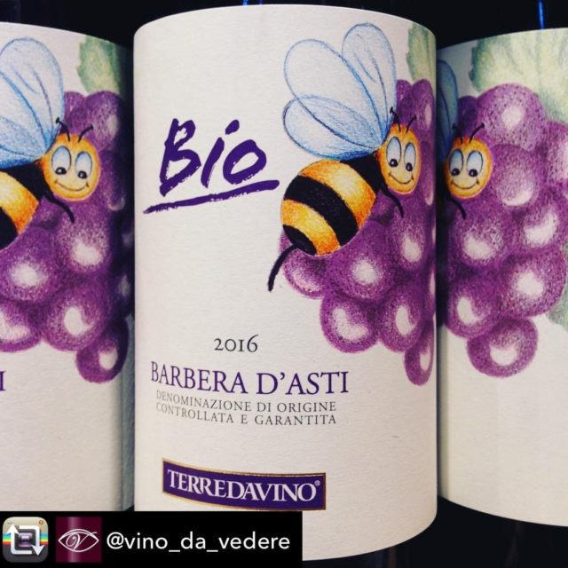 Our first organic wine Barbera dAsti! TerredaVino