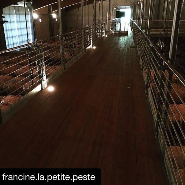 La nostra Sala delle Barbera  TerredaVino Barolo Grazie francinelapetitepeste