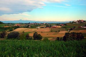 Castelnuovo Don Bosco4